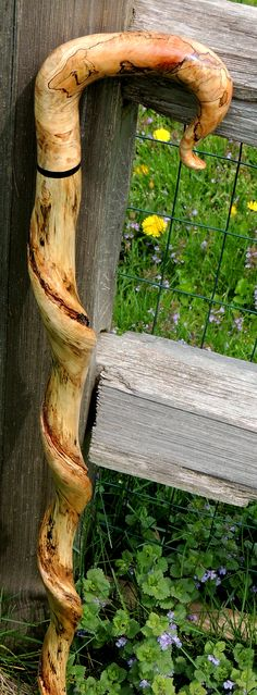 Vine Twisted Spalted Maple - Rick Colvin Canemaker - uncommoncanes.com - (from the Mark Dwyer Collection)