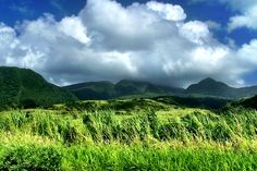 Fields and Mountains of St. Kitts