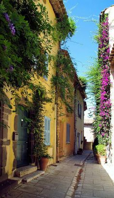 Provence Village: This is what it looks like in the villages all over France, Germany and Switzerland....and northern Italy.  Picturebookesqe :)