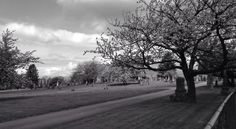 Mountain view cemetery Mountain View Cemetery, Country Roads, Pictures, Photos, Resim, Clip Art