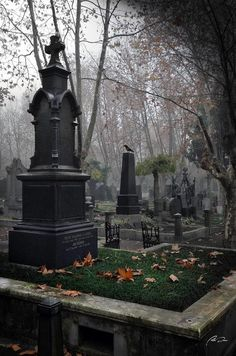 """tenebrum: """" German Cemetery. """""""