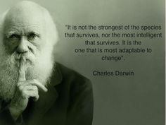 it is not the strongest of the species that survives