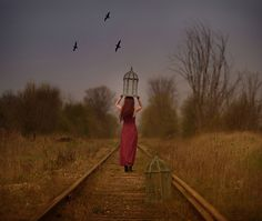 Caged bird by Patty Maher