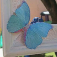 Farfalla in carta pergamena su cornice shabby chic
