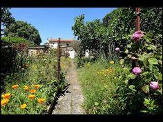 Votre agent immobilier Pascal APPARIGLIATO à Blagnac vous propose à TOULOUSE Saint Martin du Touch cette maison idéale pour investisseur (important déficit foncier défiscalisable)...