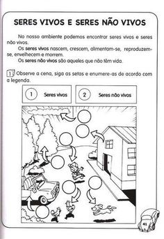 A30, Diagram, Teaching, Education, Maria Clara, Terra, Professor, Gabriel, School
