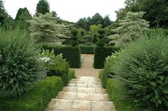 Gardens at Castillon, France. The central path where you enter the garden from the parking lot. The tall hedges on either side guard the secrets of the two gardens, new (right) and old (left).