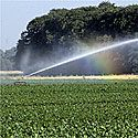 Den lille quiz om grundvandet
