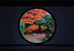 Kyoto - Window