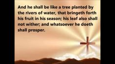 Psalm 1 Online Social Networks, Youtube Songs, Psalm 1, Great Videos, Trees To Plant, Tree Planting