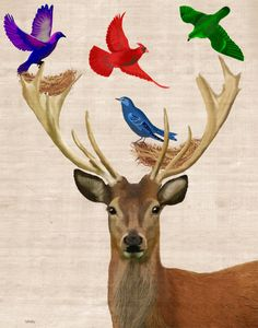 Deer Nesting Birds 8X10 Art Print Illustration Poster Acrylic Painting Giclee wall art wall decor Wall Hanging stag. $15.00, via Etsy. ...BTW,Please Check this out: http://artcaffeine.imobileappsys.com