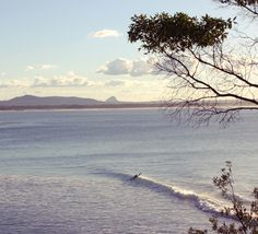 101 best noosa images noosa australia sunshine coast new zealand rh pinterest com