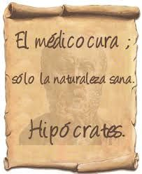 Resultat d'imatges de frases Hipócrates