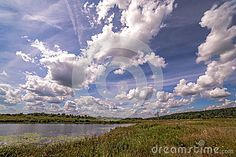 Wide angle panoramic view of a summer sunny swamp with cloud reflections in…