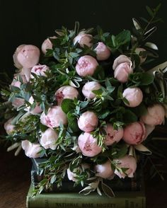 """maxitendance: """" Bouquet of Pale Pink Peonies """" My Flower, Fresh Flowers, Beautiful Flowers, Pink Flowers, Pink Roses, Peony Flower, Peony Plant, Peony Bush, Pink Petals"""