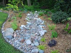 Dry Creek Bed (mk) like how the lawn is with the stones and rocks....is this what Jerry wants?