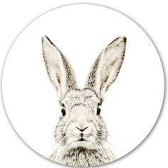Magneetsticker konijn - Groovy Magnets