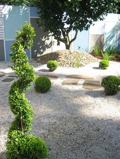 Dry Spell Gardening: