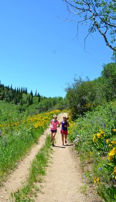Plenty of walking, running, hiking and biking trails available, including on Spring Creek Trail Steamboat Springs CO