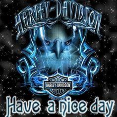 harley davidson mardi gras quotes   9758989521698651f187.gif