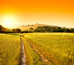 Walks of Italy | Tuscan Farmhouse Experience - Cooking Class & Wine Tasting from Chiusi