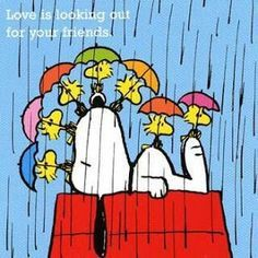 Love is looking out for your friends - Snoopy Lying on Top of His Doghouse in the Rain With Woodstock and Friends Holding Umbrellas All Around Him Meu Amigo Charlie Brown, Charlie Brown And Snoopy, Peanuts Cartoon, Peanuts Snoopy, Snoopy Hug, Peanuts Comics, Snoopy Comics, Snoopy Und Woodstock, Hello Kitty Imagenes
