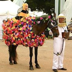 Check out 25 of the scariest and most creative horse costumes we could find. Get some great ideas for your next Halloween costume class! Horse Fancy Dress Costume, Flower Costume, Horse Halloween Costumes, Animal Costumes, Costumes For Horses, Funny Costumes, Halloween Crafts, Horse Show Mom, Show Horses