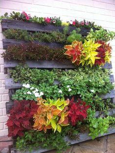 jardim-vertical-suspenso-inverno-ideias-34 Guia com 47 ideias para seu jardim vertical dicas faca-voce-mesmo-diy jardinagem madeira quintais