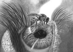 Pencil drawing Print 'Apiphobia'  Hand signed by BrighteyesArtShop, £19.50