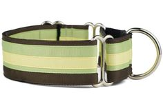 One of the many benefits of a martingale collar is that with small heads and larger necks are not able to slip out of the collar. (Collar showing is our Key Lime Pie Martingale Dog Collar) Martingale Dog Collar, Handmade Dog Collars, Dog Collars & Leashes, Key Lime Pie, Collar And Leash, Favorite Color, Printing On Fabric, Your Dog, Diaper Bag