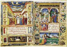 Cammello (Borromeo) - Miniature del Libro d'Ore Borromeo, Cristoforo De Predis, seconda metà del XV secolo. Biblioteca Ambrosiana, Milano.