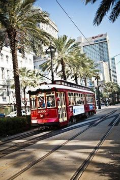 New Orleans street car. I took the street car on St. Charles up to the Garden District, Tulane,Loyola....