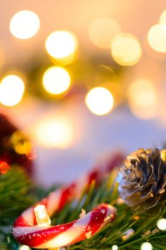 """joyeux Noël - joyeux Noël """"joyeux Noël You are in the right place about trends clothes Here we offer you the - Christmas Tale, Cozy Christmas, Christmas Wishes, Beautiful Christmas, Little Christmas, All Things Christmas, Christmas Holidays, Christmas Decorations, Christmas Phone Wallpaper"""