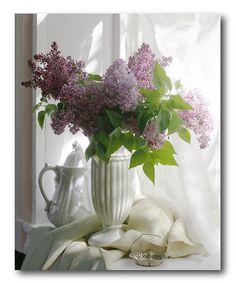 Another great find on #zulily! Purple Flower Vase II Canvas by COURTSIDE MARKET #zulilyfinds