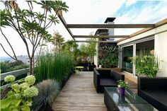 Terrasse outdoor wood plants