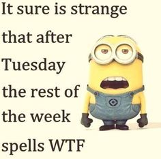 Humor Discover Funny quotes minions humor despicable me 19 ideas Funny Minion Memes Minions Quotes Funny Texts Funny Jokes Funny Cartoons Wtf Quotes Funny Hilarious Sayings Despicable Me Memes Funny Sarcasm Funny Minion Pictures, Funny Minion Memes, Minions Quotes, Funny Texts, Minions Pics, Funny Humor, Hilarious Jokes, Hilarious Pictures, Funny Cartoons