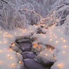 Lights of winter