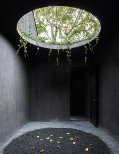 Gallery of Damushan Valley Teahouse / DnA - 13