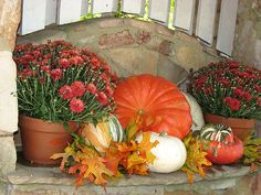 Autumn Design~ by NatureGreeting Cards ©ccwri Autumn Painting, Autumn Leaves, Harvest, Pumpkin, Seasons, Holiday Decor, Vignettes, Front Porch, Cards