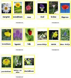 * Woordkaarten lente bloemen. TIP: 2 x uitdraaien, 1 kaart heel laten 1kaart los knippen ll legt de dezelfde kaarten erbij /memorie/stempelen...