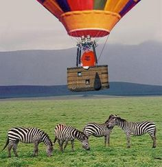 Hot air balloon travel over Africa