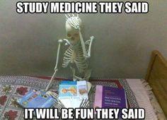 funny skeleton meme - Google Search