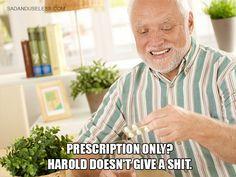 Meet Hide-The-Pain Harold