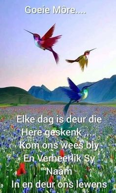 Lekker Dag, Afrikaanse Quotes, Goeie More, Good Night Sweet Dreams, Good Night Quotes, Good Morning Wishes, Morning Greeting, Morning Images, Bible