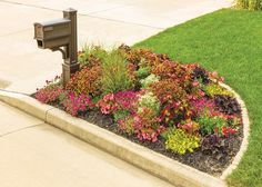 Get curb appeal with a mailbox garden l The Home Depot Garden Club