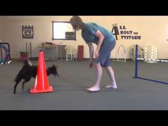 ▶ Teaching Left And Right To Your Agility Dog