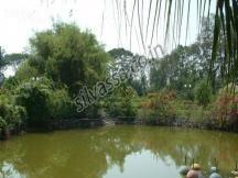 Island Garden #silvassa. http://www.resortsinsilvassa.com/silvassa-sightseeing