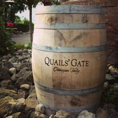 winery in Kelowna -- Curated by: Neufeld Jones Vancouver British Columbia, Coeur D'alene, Quail, Banff, Wineries, Wine Country, Pacific Northwest, Places Ive Been, Gate