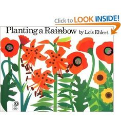"Louis Ehlert's, ""Planting a Rainbow,"" is a picture book about the planting and growing cycle of a flower.  Each color of the rainbow is represented in a different type of flower, for example red is for tulips, carnations, and roses.  The picture book uses large text, which is very student friendly.   This book is noted to be appropriate for children ages 4-8."