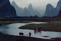 Bruno Barbey - CHINA. Guangxi. 1980. Guilin. Yanshuo. Rice paddies.(Magnum Photos)